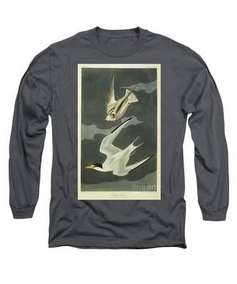 Designs Similar to Little Tern