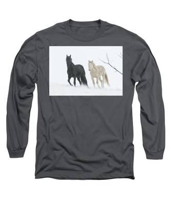 Cold Mountain Long Sleeve T-Shirt