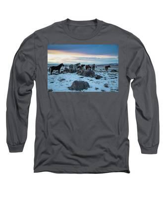 Winter Evening Long Sleeve T-Shirt