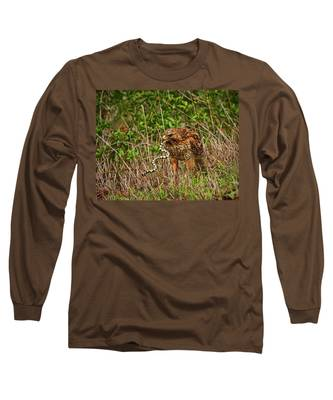 Hawk And Snake Long Sleeve T-Shirt