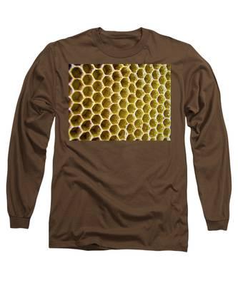Bee's Home Long Sleeve T-Shirt