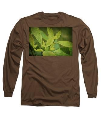 Sassafras Tree Long Sleeve T-Shirt