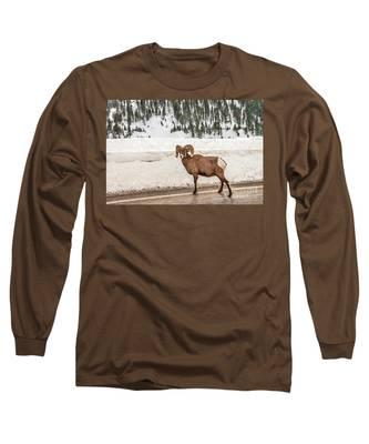 Bighorn Sheep Stopping Traffic Long Sleeve T-Shirt