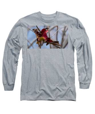 Red Over Branch Long Sleeve T-Shirt