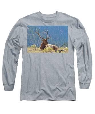 Bull Elk Resting Long Sleeve T-Shirt