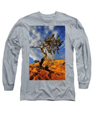 Long Sleeve T-Shirt featuring the photograph Dusk Dance by Skip Hunt