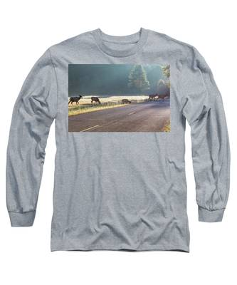 Searching For Greener Grass Long Sleeve T-Shirt