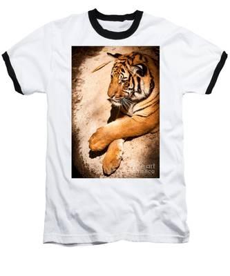 Tiger Resting Baseball T-Shirt