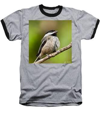 Black Capped Chickadee Singing Baseball T-Shirt