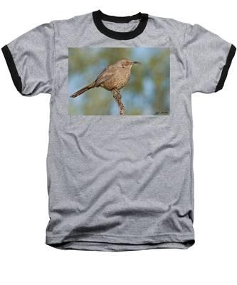 Curve-billed Thrasher Baseball T-Shirt