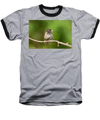 Dark Eyed Junco Baseball T-Shirt