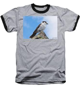 Gray Jay With Blue Sky Background Baseball T-Shirt