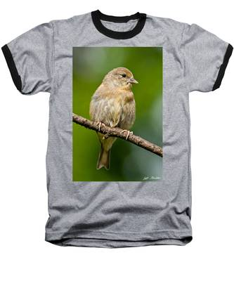 Juvenile American Goldfinch Baseball T-Shirt