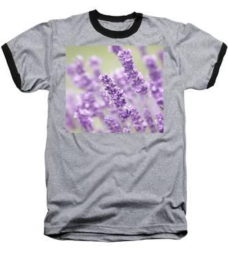 Lavender Dreams Baseball T-Shirt