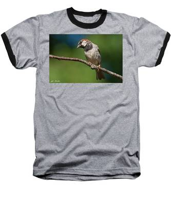 Male House Sparrow Perched In A Tree Baseball T-Shirt