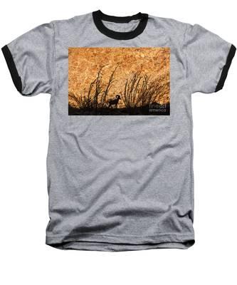 Silhouette Bighorn Sheep Baseball T-Shirt