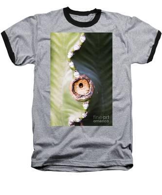 Sunlight Split On Cactus Knot Baseball T-Shirt