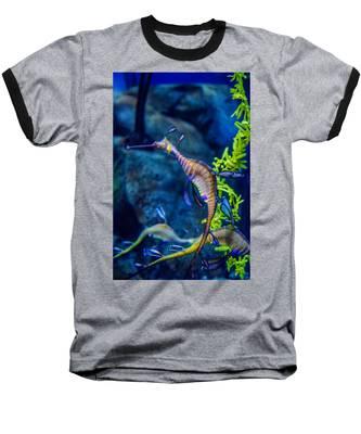 Weedy Seadragon Baseball T-Shirt