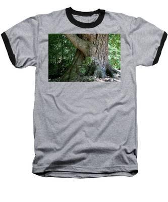 Big Fat Tree Trunk Baseball T-Shirt