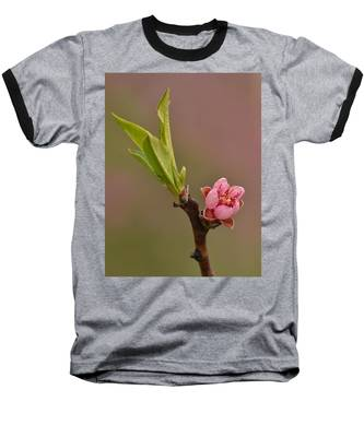 Petite Peach Baseball T-Shirt