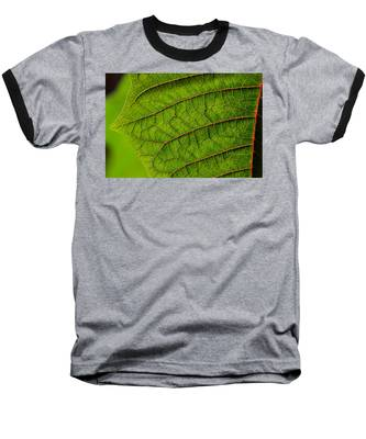 Poinsettia Leaf I Baseball T-Shirt