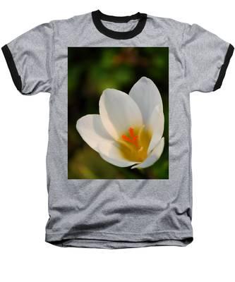 Pretty White Crocus Baseball T-Shirt