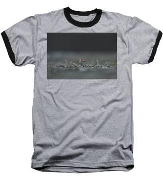 Lichen-scape Baseball T-Shirt