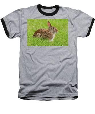 Rabbit In A Grassy Meadow Baseball T-Shirt
