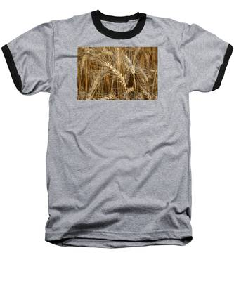 Baseball T-Shirt featuring the photograph Ready For Harvest by Andrea Platt