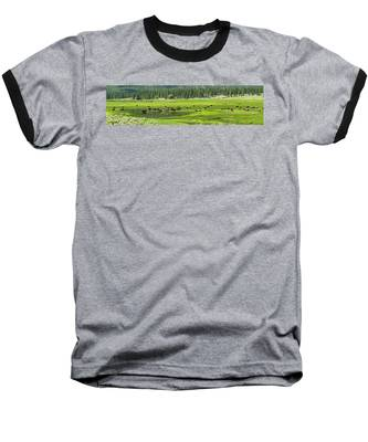 Spring Grazing Baseball T-Shirt