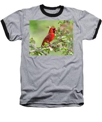 Summer Cardinal Baseball T-Shirt