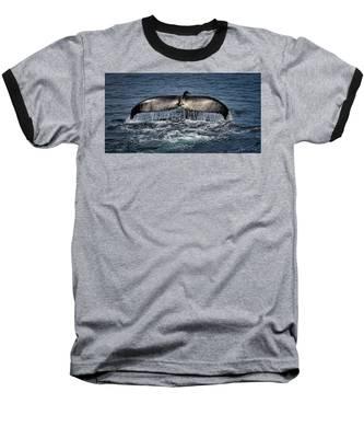 Whale Tail Baseball T-Shirt by Andrea Platt