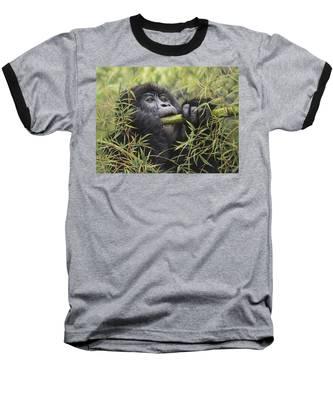 Young Mountain Gorilla Baseball T-Shirt