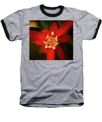 Crimson Beauty Baseball T-Shirt