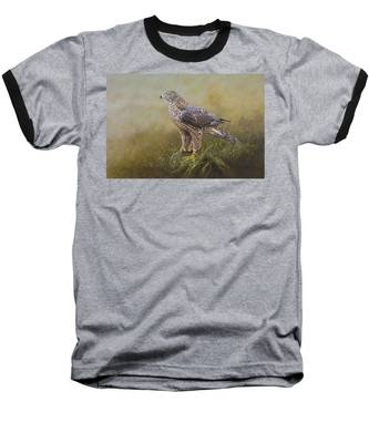 Female Goshawk Paintings Baseball T-Shirt