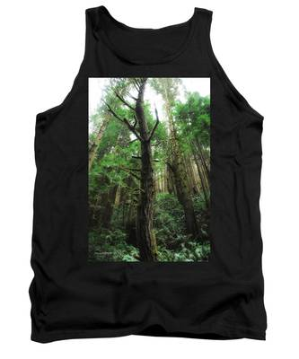 Groovin With The Redwoods Tank Top