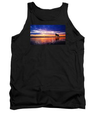 Dog Chasing Stick At Sunrise Tank Top