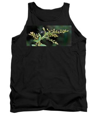 Entrapped Tank Top