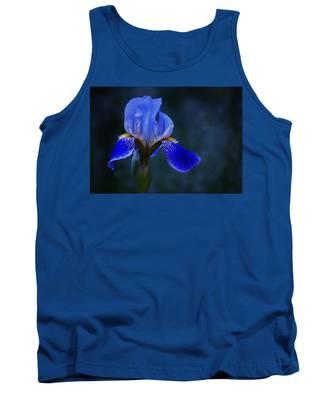 Designs Similar to Antiqued Blue Iris