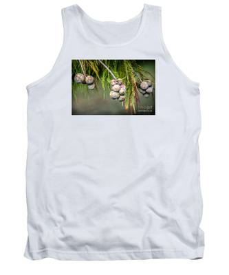 Bald Cypress Tree Seed Pods Tank Top