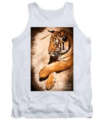 Tiger Resting Tank Top