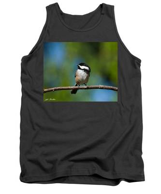 Black Capped Chickadee Perched On A Branch Tank Top