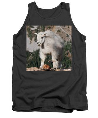 Mountain Goat Kid Standing On A Boulder Tank Top
