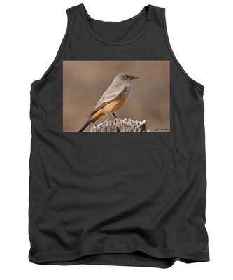 Say's Phoebe On A Fence Post Tank Top