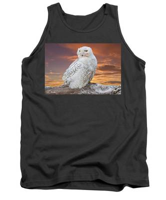 Snowy Owl Perched At Sunset Tank Top