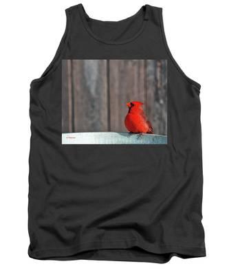 Cardinal Drinking Tank Top