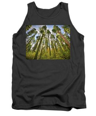 Forest Of Light Tank Top