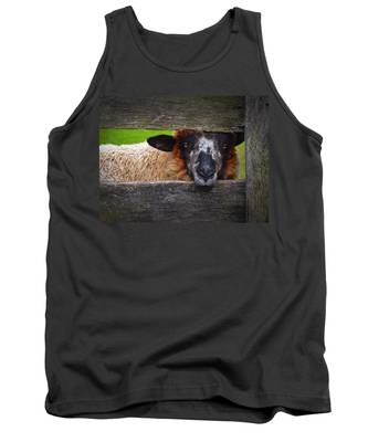 Tank Top featuring the photograph Lookin At Ewe by Skip Hunt