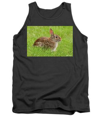 Rabbit In A Grassy Meadow Tank Top