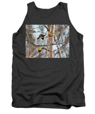 Yellow-shafted Northern Flicker Staying Warm Tank Top